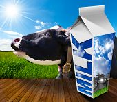 stock photo of white-milk  - White packaging of fresh milk with text Milk in a countryside landscape with green grass and a close up of a black and white cow mooing - JPG