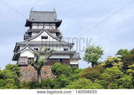 Japanese Castle, Inuyama