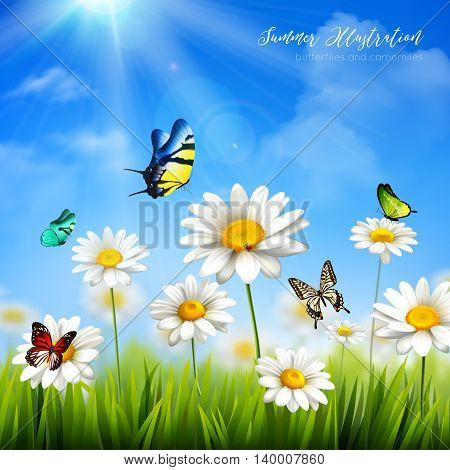 Beautiful colorful butterflies and green grass with camomile flowers background flat vector illustration