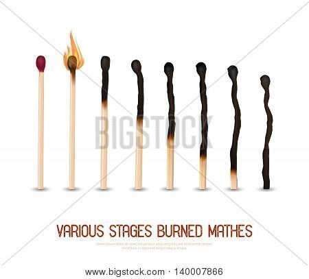 Various stages of matches burning from new to completely burned set isolated on white background realistic vector illustration