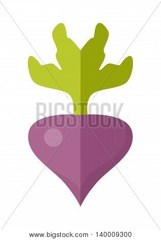 Beet vector in flat style design. Vegetable illustration for conceptual banners, icons, app pictogram, infographic, and logotype elements. Isolated on white background.