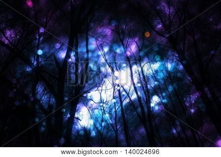 Fantasy Starry Forest