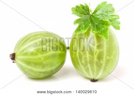 fresh gooseberries with leaf isolated on white background close-up macro.