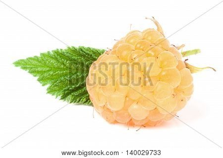 yellow raspberries with leaf isolated on white background macro.