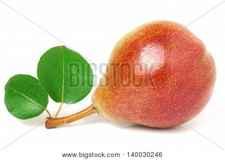 one red-yellow pear with leaf isolated on white background.
