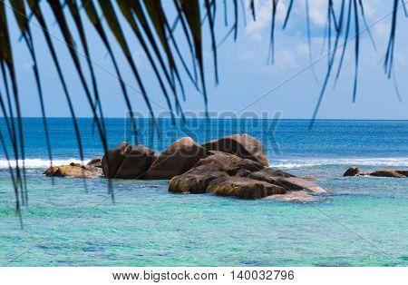 Coconut Getaway Idyllic Coast