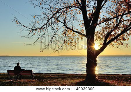 A Man Watching the Sunrise over a Lake on a Late Fall Morning