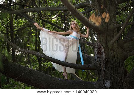 Young beautiful girl standing in on a big tree in summer park