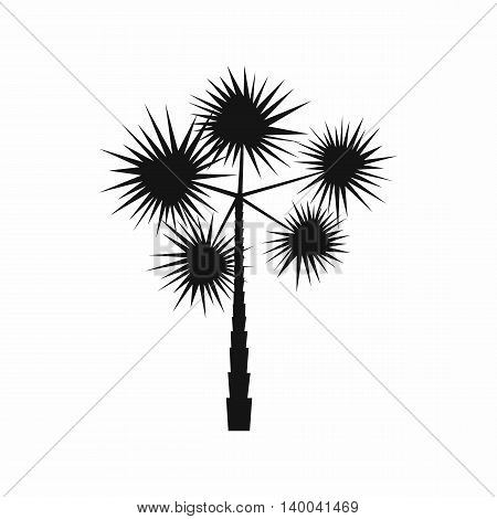 Spiny tropical palm tree icon in simple style isolated on white background. Flora symbol