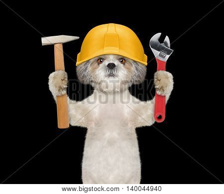Cute dog builder holding tools in its paws -- isolated on black