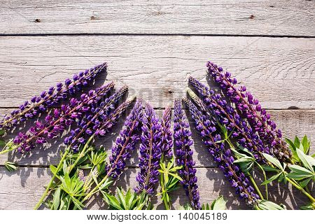 Blue Lupines On Wooden Background.
