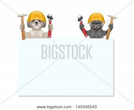 dogs and cat repairman holding tools in their paws -- isolated on white