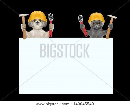 dogs and cat repairman holding tools in their paws -- isolated on black