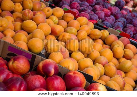 Fruit Market Closeup - Peaches, Nectarines And Plums