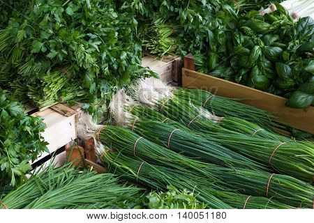Food Market, Box Of Fresh, Mixed Herbs And Spring Onions