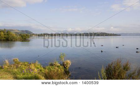 Peaceful Rotorua Lake Sunrise