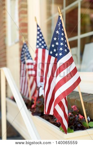 American flags in a flower planter in front of a store window.