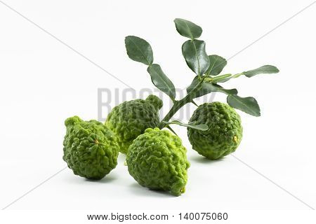 Kaffir lime isolated is fruits and leaves are used as a spice for thai food and etc.