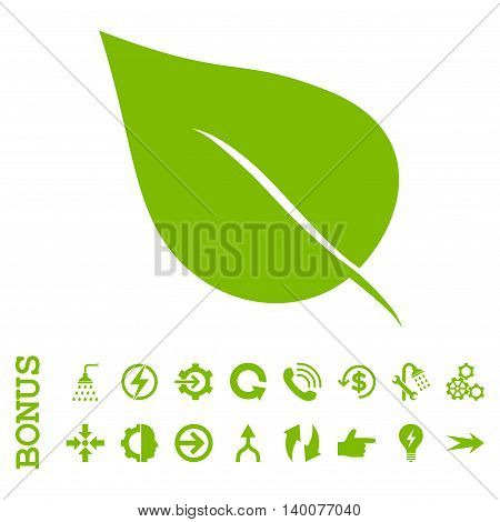 Plant Leaf glyph icon. Image style is a flat iconic symbol, eco green color, white background.
