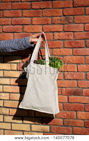 Linen Bag with Lettuce Salad against the background of brick wall closeup
