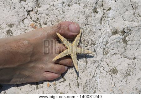 Big Foot Barefoot Of A Young Man And Starfish