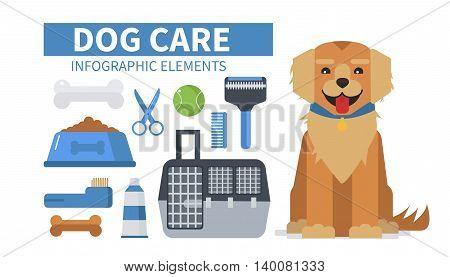 Dog care infographic elements. Vector flat  illustration.