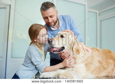 Cuddling pet