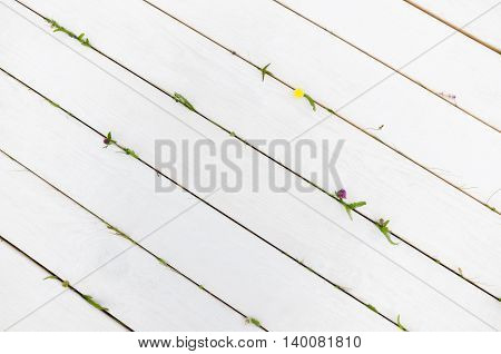 White wooden planks with green elements. Tiny summer flowers on empty background, copyspace for commercials