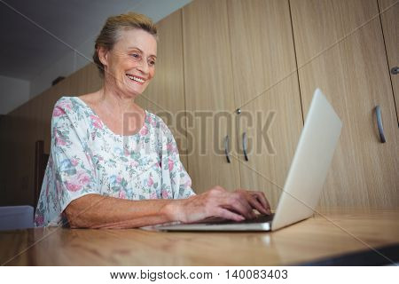 Portrait of smiling senior woman using a laptop