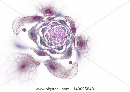Abstract colorful rose flower on white background. Fantasy pink and purple fractal design for postcards or t-shirts. 3D rendering.