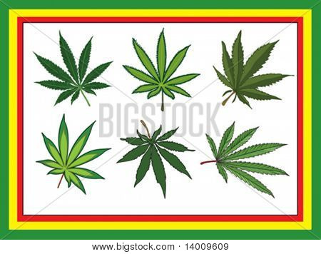 Cannabis leafs with stems. Six different kinds