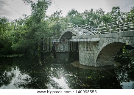 Stoned foot bridge leading to green forest