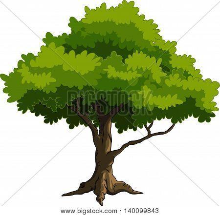 beauty green tree cartoon for you design