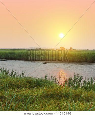 Concurso pôr do sol sobre o Rio com grama verde