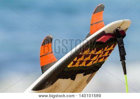 Surfer wetsuit surfboard fins equipment closeup unidentified.