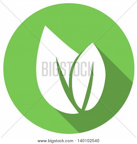 Eco icon green leaf, vector isolated illustration