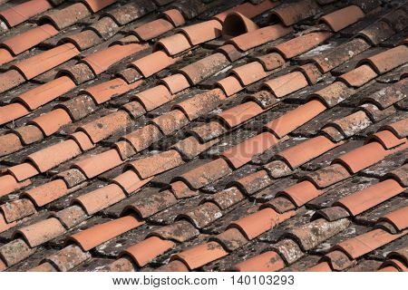 old Roof Pans on an italian House in Florence