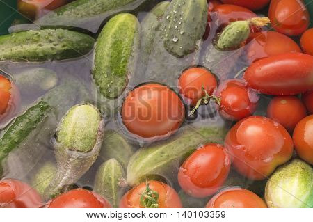 Red tomatoes and green cucumber lies in transparent water