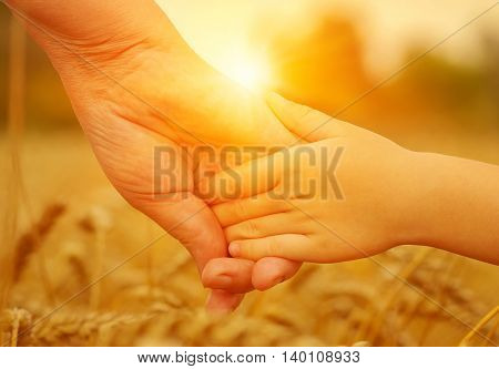 Hands of mother and daughter on sun. Holding each other on wheat field