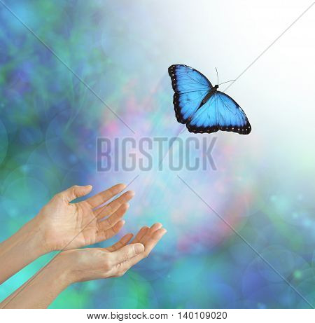 Into the Light - metaphorical representation of releasing or letting a soul go, into the light, using a butterfly, female hands and an ethereal background and white light