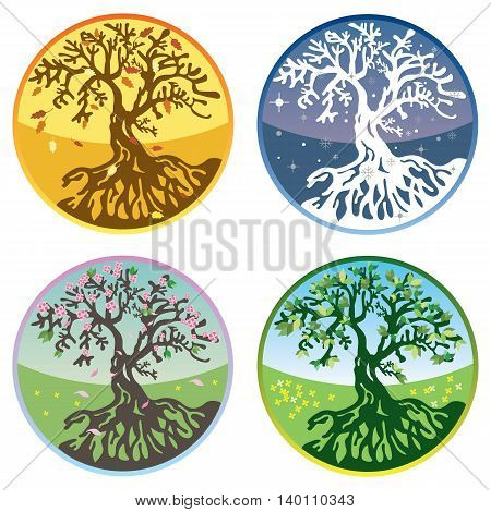 Tree in four seasons - spring summer autumn winter. Vector illustration. Isolated on white background.