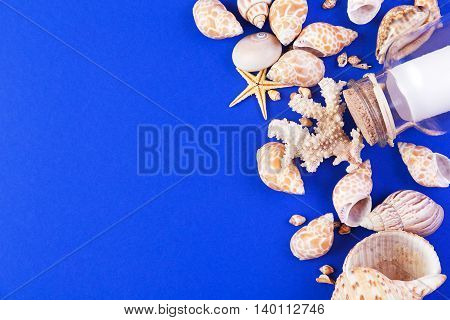 Colorful marine items - seashells starfish and bottle with note on a blue background. Top view with copyspace.