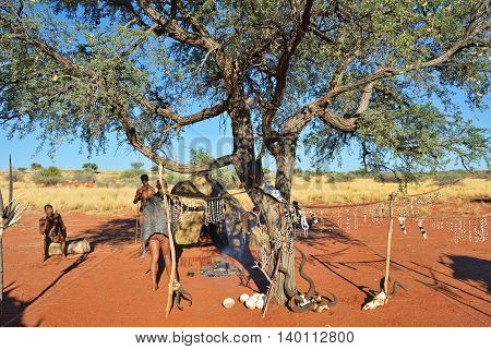 KALAHARI NAMIBIA - JAN 24 2016: Bushmen tribe village. The San people also known as Bushmen are members of various indigenous hunter-gatherer peoples of Southern Africa
