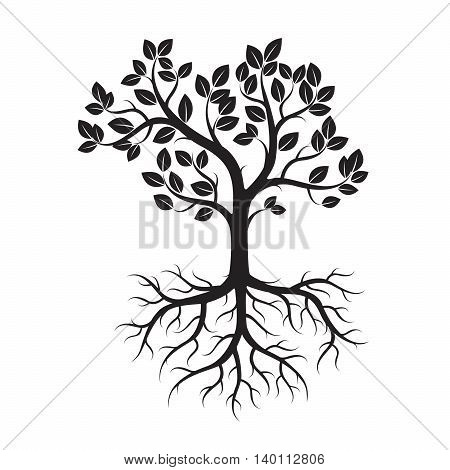 Black Tree and Roots. Vector Illustration of Plant