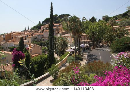 Award winning blooming city Bormes-les-Mimosas in France