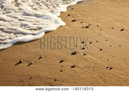 a background image of the beach in summer time