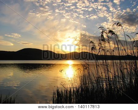 dawn over the lake and a grass in the foreground