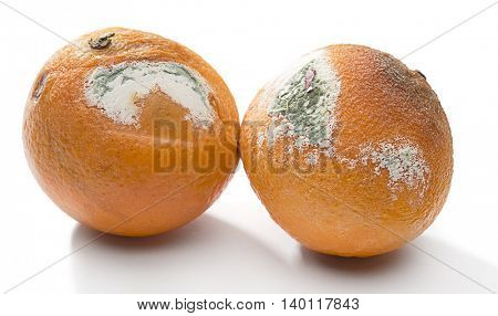 Rotten Fruits Isolated