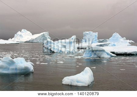 Group of icebergs in Antarctica in summer
