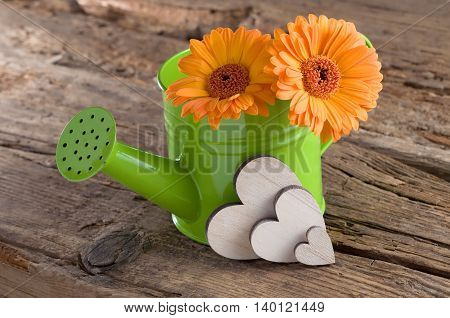 Still life with flowers in a watering can